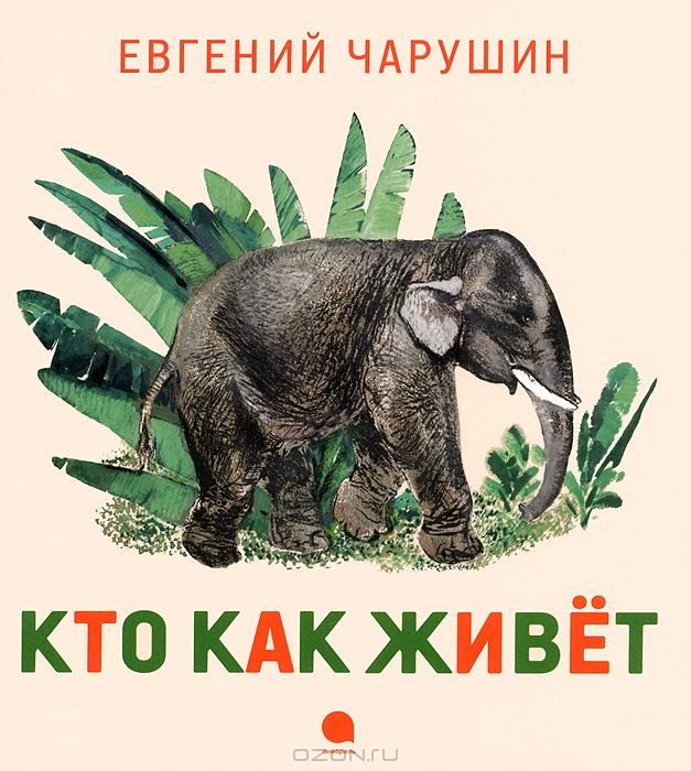Рассказы из рунета 1 фотография